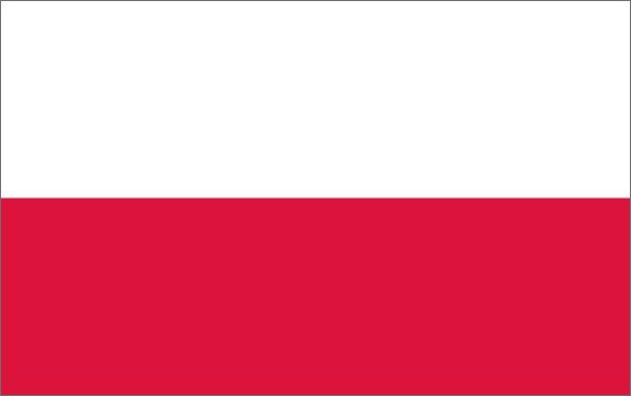 Flaga Polski - język polski
